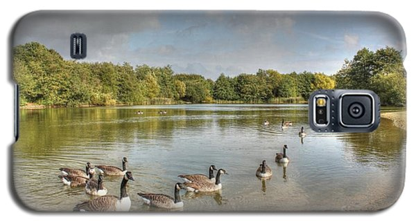 Geese On The Lake Hdr Galaxy S5 Case