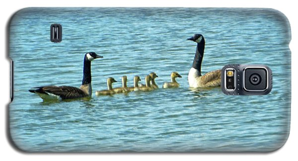 Galaxy S5 Case featuring the photograph Geese Proud Parents by Rockin Docks Deluxephotos