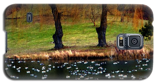 Geese Weeping Willows Galaxy S5 Case