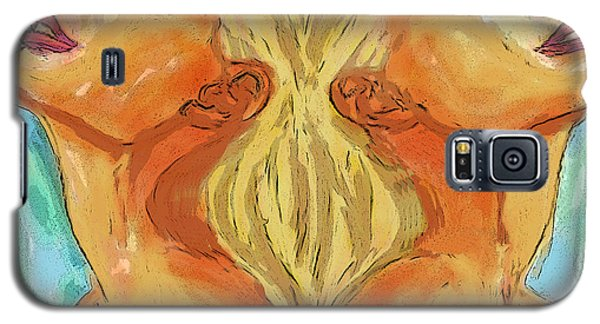 Gemini Galaxy S5 Case