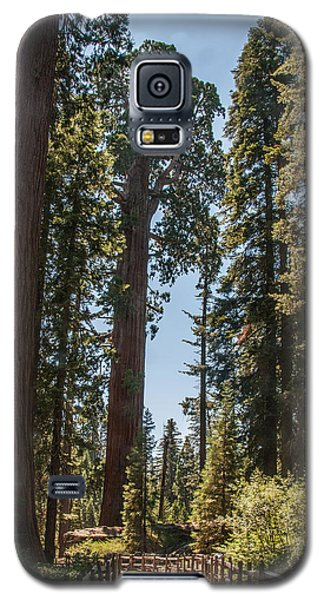General Grant Tree Kings Canyon National Park Galaxy S5 Case