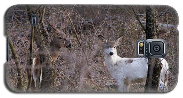 Genetic Mutant Deer Galaxy S5 Case