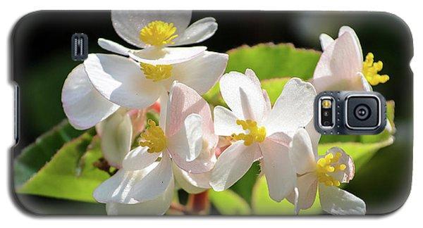 Gentle Bloom Galaxy S5 Case