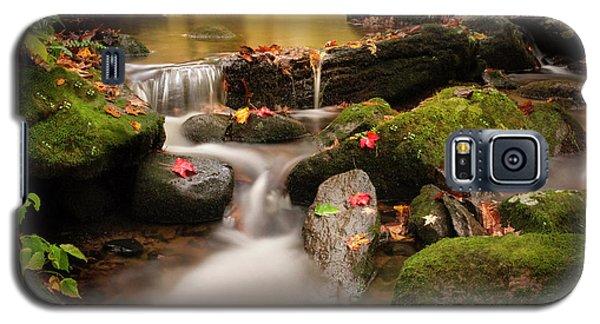 Gentle Cascades Of Autumn  Galaxy S5 Case