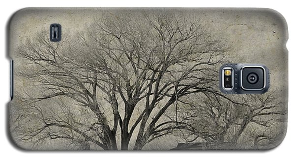 Galaxy S5 Case featuring the photograph Gentle Giant by Barbara Manis