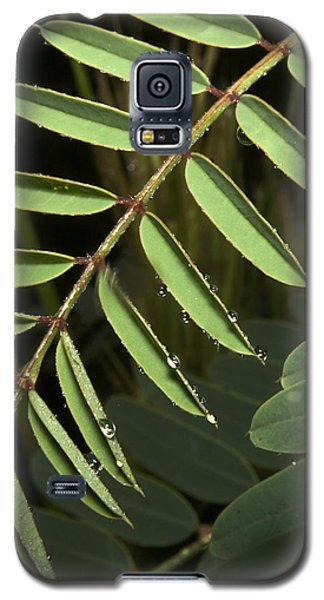 Galaxy S5 Case featuring the photograph Gentle Morning Dew by Karen Musick