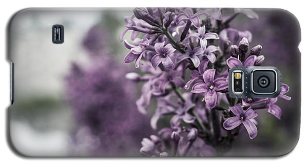 Gentle Spring Breeze Galaxy S5 Case