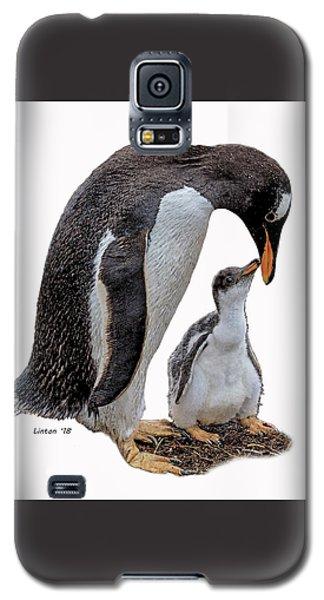 Gentoo Penguins Galaxy S5 Case
