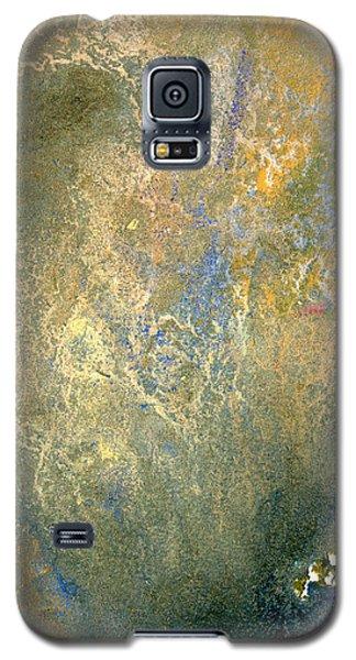 Geology Beginnings Galaxy S5 Case