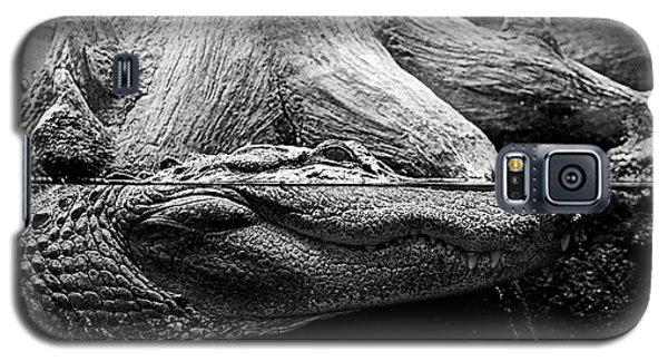 Georgia Gator Galaxy S5 Case by Dan Wells