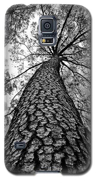 Georgia Pine Galaxy S5 Case by Dan Wells
