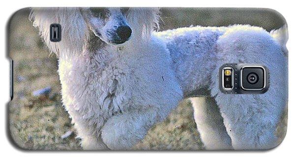 Georgie Galaxy S5 Case