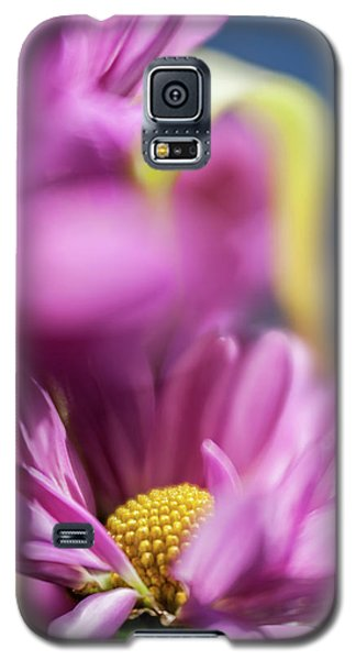 Gerber Daisy In Purple Galaxy S5 Case