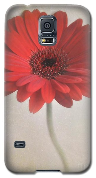 Galaxy S5 Case featuring the photograph Gerbera Daisy by Lyn Randle