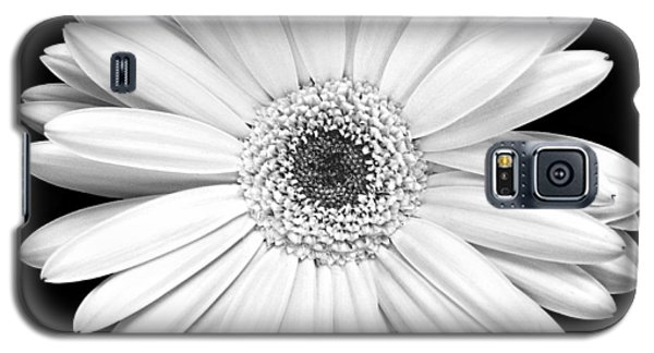 Single Gerbera Daisy Galaxy S5 Case by Marilyn Hunt
