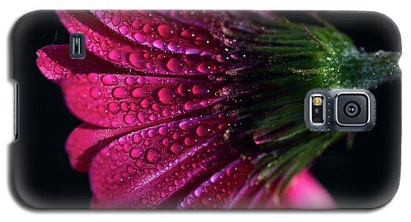 Gerbera Daisy Galaxy S5 Case