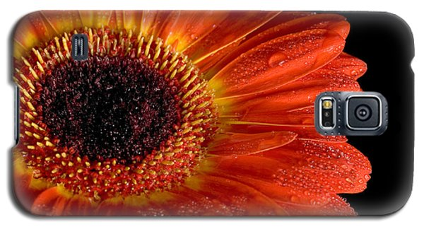 Gerbera I Galaxy S5 Case
