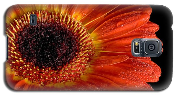 Gerbera I Galaxy S5 Case