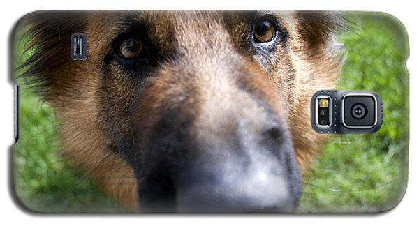 German Shepherd Dog Galaxy S5 Case