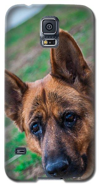 German Shepherd Profile Galaxy S5 Case
