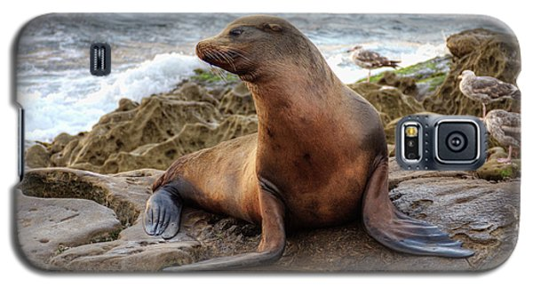 Galaxy S5 Case featuring the photograph Get My Good Side by Eddie Yerkish