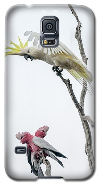 Get Off My Perch Galaxy S5 Case