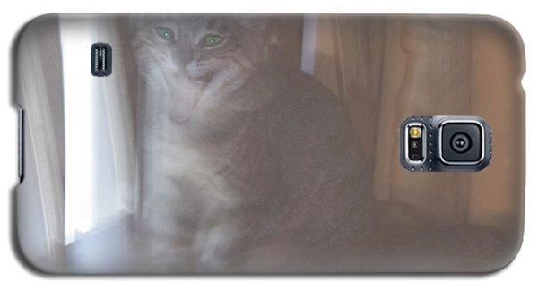 Ghost Cat Galaxy S5 Case by Yulia Kazansky