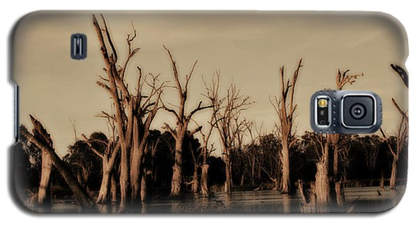 Galaxy S5 Case featuring the photograph Ghostly Trees V2 by Douglas Barnard