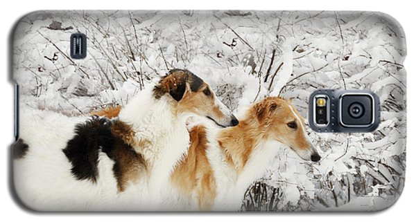 Galaxy S5 Case featuring the photograph giant Borzoi hounds in winter by Christian Lagereek