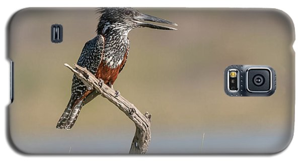 Giant Kingfisher Galaxy S5 Case