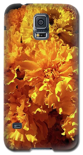 Giant Marigolds Galaxy S5 Case