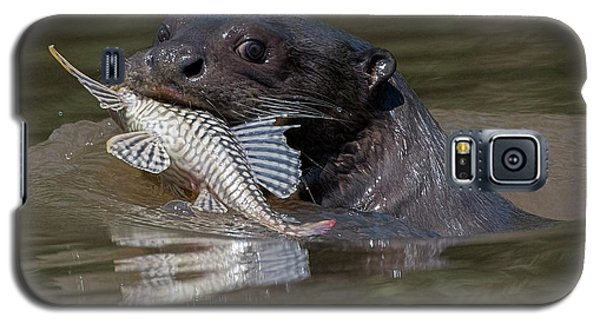 Galaxy S5 Case featuring the photograph Giant Otter #1 by Wade Aiken
