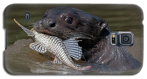 Giant Otter #1 Galaxy S5 Case by Wade Aiken
