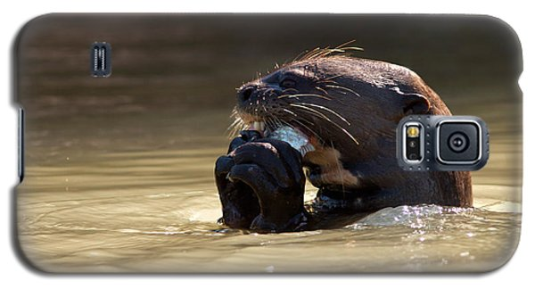 Giant Otter Eating Fish Galaxy S5 Case