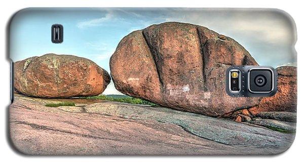 Giant Potatoes Galaxy S5 Case