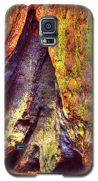 Giant Sequoia Base With Fire Scar Galaxy S5 Case
