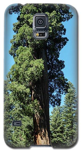 Giant Sequoia, Sequoia Np, Ca Galaxy S5 Case