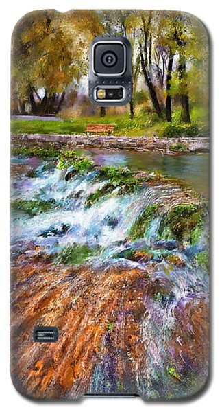 Giant Springs 2 Galaxy S5 Case by Susan Kinney