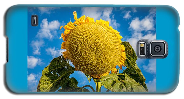 Giant Sunflower Against A Blue Sky With Clouds. Galaxy S5 Case