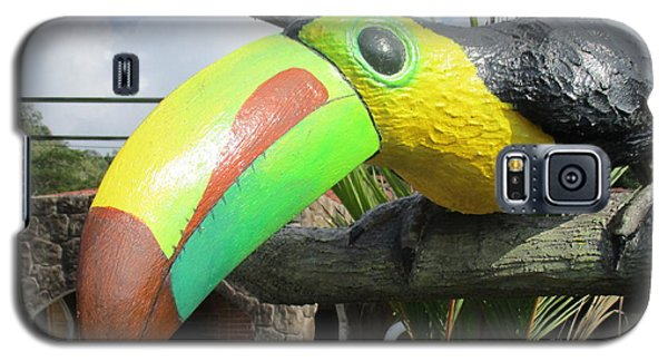 Giant Toucan Galaxy S5 Case by Randall Weidner