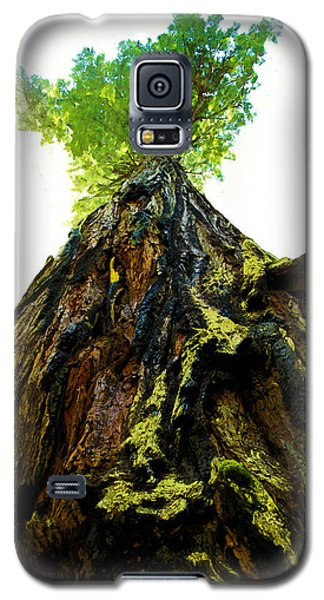 Giants Of The Earth Galaxy S5 Case
