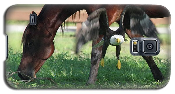 Galaxy S5 Case featuring the photograph Giddy Up. by Evelyn Garcia