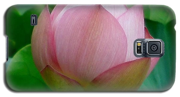 Galaxy S5 Case featuring the photograph Gift Of God's Creation by Chad and Stacey Hall