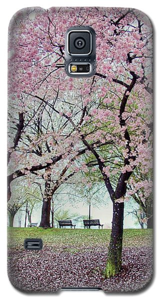 Gifts Galaxy S5 Case by Mitch Cat