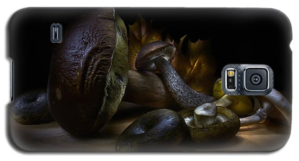 Gifts Of September Galaxy S5 Case by Alexey Kljatov