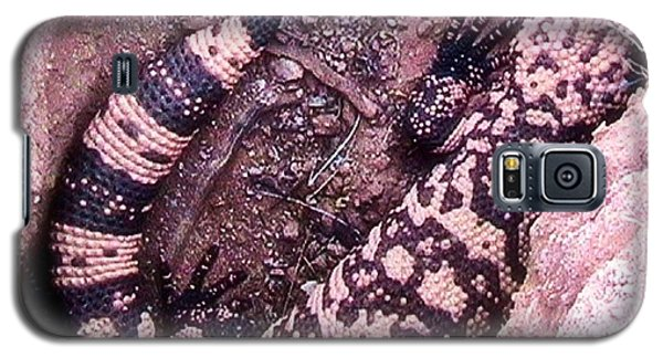 Gila Monster - Number One Galaxy S5 Case