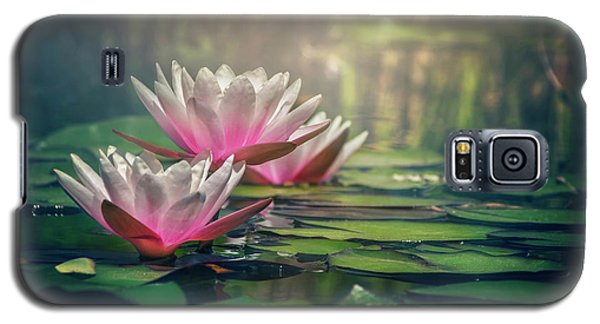 Gilding The Lily Galaxy S5 Case by Carol Japp