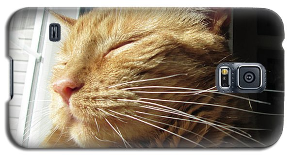 Ginger Tabby Galaxy S5 Case
