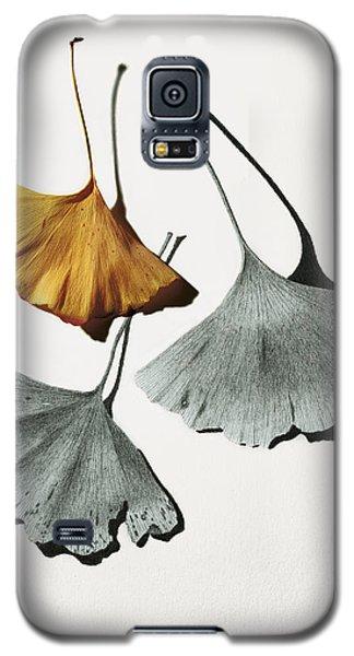 Ginkgo Leaves Galaxy S5 Case