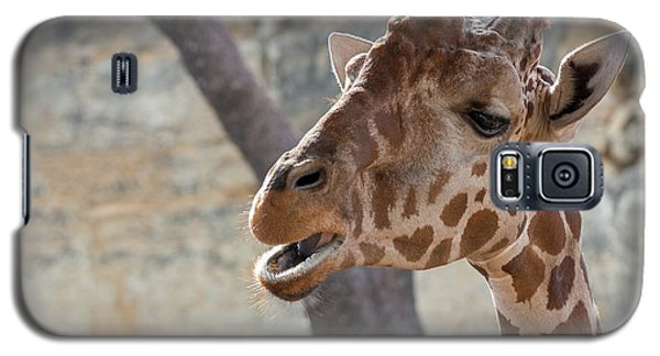 Girafe Head About To Grab Food Galaxy S5 Case